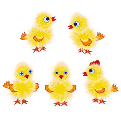 Yellow chicks set vector