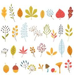 Autumn floral design elements vector image