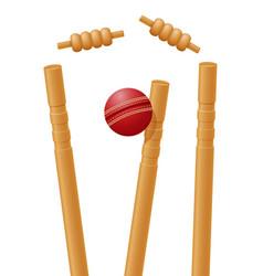 ball cricket in wicket vector image vector image