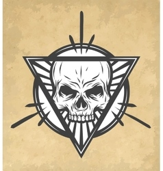 Skull on an abstract vector image vector image