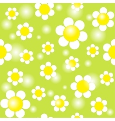 White chamomiles on a green background seamless vector image vector image