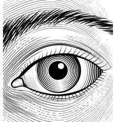 Engraving human eye vector