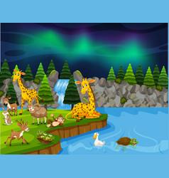 Wild animals near lake night scene vector