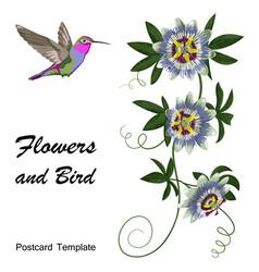 hummingbird and passiflora postcard vector image vector image
