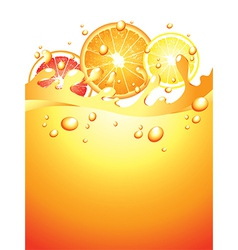 citrus splash verticall background vector image