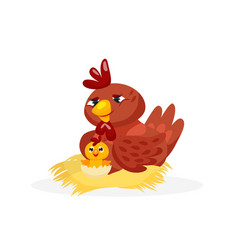 cute chicken family character on white background vector image