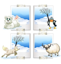 Four kind of arctic animals vector