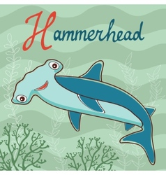 Hammerhead vector image