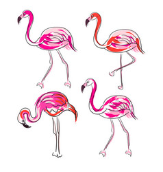 Hand drawn sketch pink flamingo set vector