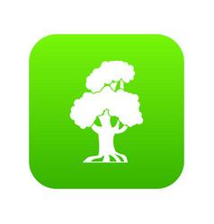 oak icon digital green vector image