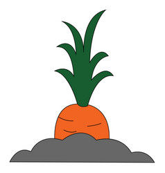 Painting a giant orange carrot or color vector
