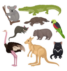 set of australian animals and birds wild vector image