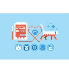 Animal Blood Donation vector image vector image