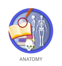 Anatomy of human school classes discipline vector