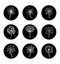 Black and white dandelion icon set vector
