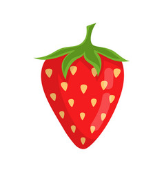 cute strawberry isolated on white background vector image