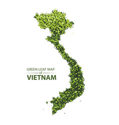 Green leaf map of vietnam vector