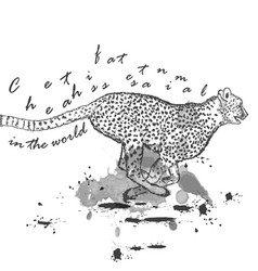 Hand drawn cheetah animal running with ink spots vector