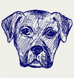 Portrait puppy vector image