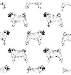 seamless pattern with hand drawn pugs vector image