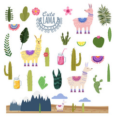 Set lama alpaca cacti drinks and decorative vector