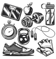 set sport elements vector image