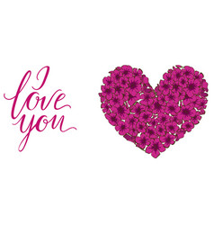 Heart of pink phlox flowers isolated on white vector
