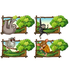 Wild animals haning on the branch vector image