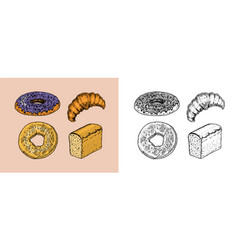 bakery products set donut and bread croissant vector image
