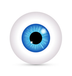 Eye look icon eyeball vision blue eyesight vector