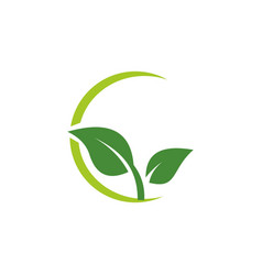 green leaf logo vector image