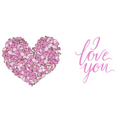 Heart gently pink phlox flowers isolated vector