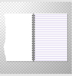 Opened notebook template with lined and blank page vector