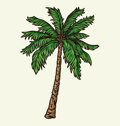 palm tree colorful vintage concept vector image