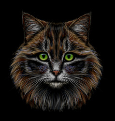 Realistic colorful hand-drawn portrait a cat vector
