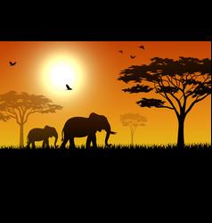 silhouette elephant in savanna vector image