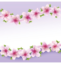 Stylish floral background greeting card with vector image