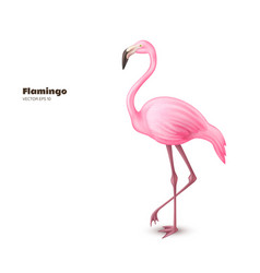 realistic 3d pink flamingo vector image