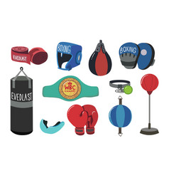boxing equipment tools set box accessories vector image
