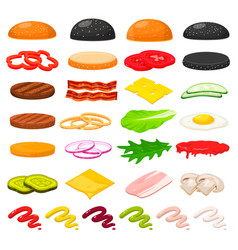 burger ingredients set vector image