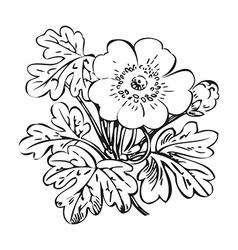 Floral bush retro black on white hand drawn vector image