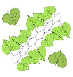 green leaves line on white vector image