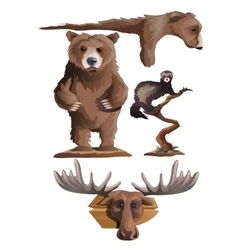 Hunting trophies bear deer and other animals vector
