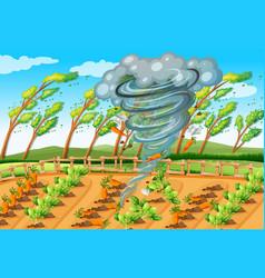 Tornado in farm scene vector