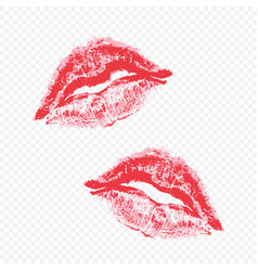beautiful lips on a transparent background vector image vector image