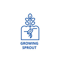 growing sprout line icon concept growing sprout vector image