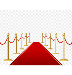 realistic detailed 3d red carpet and barrier rope vector image