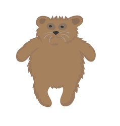 Sample bear vector