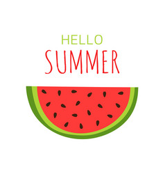 summer with watermelon on white background vector image