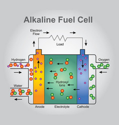 the alkaline fuel cell technologies infographic vector image